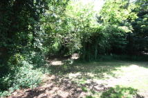 Holly Hill Lane Land for sale