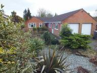 Detached Bungalow in Penleigh Road, Westbury...