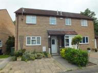 2 bed semi detached house to rent in Indigo Gardens, Westbury...