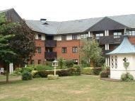 Apartment to rent in Poplar Drive, Hutton...