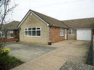 Detached Bungalow in Selwyn Street, S44