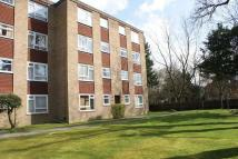 Ground Flat to rent in Church Rd, Crystal Palace