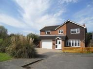 Detached house to rent in Halfacres, WITHAM, Essex
