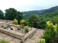 2 bed Detached Bungalow for sale in Starkholmes Road...