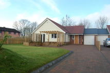 3 bed Bungalow in Seven Cottages Lane...