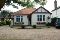 High Road Detached Bungalow for sale