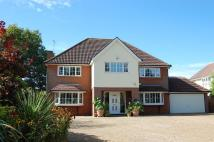 Detached house for sale in MAIN ROAD, Woodbridge...