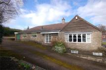 Gaskell Lodge Detached Bungalow to rent