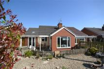 Semi-Detached Bungalow for sale in 4 Dog Kennel Lane...