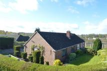Semi-Detached Bungalow to rent in 19, Sidney Road, Ludlow