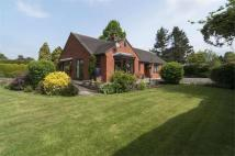 3 bedroom Detached Bungalow in Meran, Linney, Ludlow...