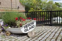 Heron Island Town House to rent