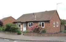 Detached Bungalow in Noel Close, Hopton...