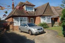 Detached property in Middleton Road, Gorleston