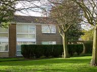 new Flat to rent in Whickham