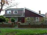 Heworth Bungalow to rent