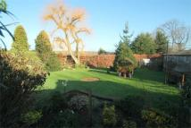 2 bed Detached Bungalow in White Cottage Road...