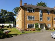 Ground Flat to rent in Redcotts Lane, Wimborne...