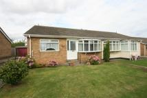 Semi-Detached Bungalow to rent in Cornforth Grove...