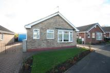 Sacriston Close Detached Bungalow to rent