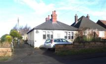 Belper Road Bungalow for sale