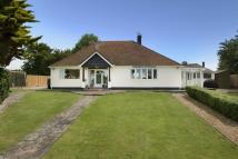 Bungalow for sale in Woodnesborough, Sandwich...
