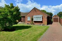 Bungalow for sale in Sandwich, Kent