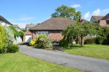 Sturry Bungalow for sale