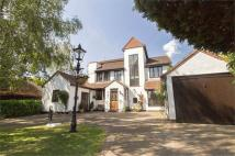 6 bed Detached home for sale in Highams Road, HOCKLEY...