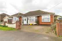 Florence Road Detached Bungalow for sale