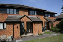 Tring Flat to rent