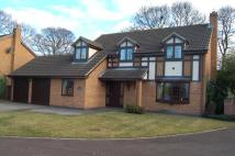 4 bed Detached house for sale in The Sycamores...