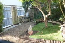 3 bed semi detached house to rent in Drake Avenue, Eastbourne...