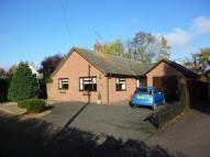 3 bed Detached Bungalow in Mere Farm Lane...