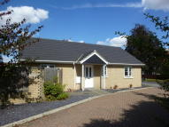 Detached Bungalow for sale in Malting Field, Elmswell