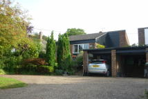Detached Bungalow for sale in Stoney Lane, Thurston