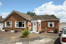 3 bed Detached Bungalow in Orchardmede...