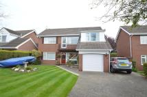4 bed Detached property for sale in 19 Larkhill Road...
