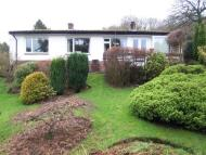 Detached Bungalow to rent in High Meadow, Hazler Road...