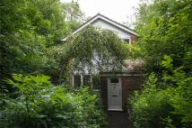 Detached property for sale in Sandbrooke Walk...