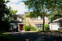 4 bedroom Detached home to rent in Auclum Close...