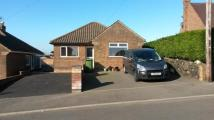 3 bed Detached Bungalow in Windmill Rise, Belper