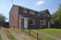 Blount Road semi detached property to rent