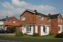 semi detached property to rent in Beaumont Road...