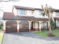 property to rent in Mimosa Close, Great Hay