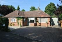 Detached Bungalow for sale in Colchester