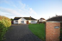 3 bed Detached Bungalow in West Bergholt, Colchester
