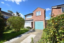 3 bedroom Detached house to rent in Byron Avenue, Colchester