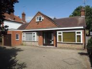 3 bed Detached Bungalow in Blackheath