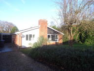 Detached Bungalow in Hill Farm Lane...